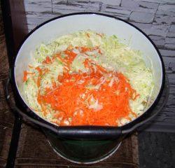 Готовим квашеную капусту.