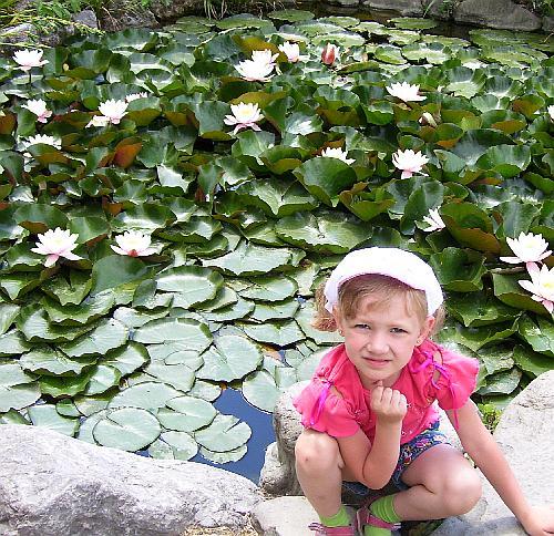 Озеро в оранжерее кактусов в Крыму
