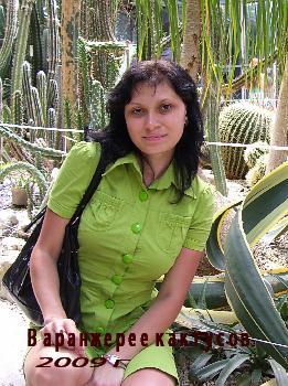 В оранжерее кактусов