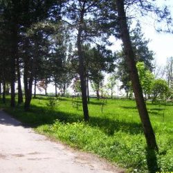 Весенний парк Юбилейный в Кременчуге