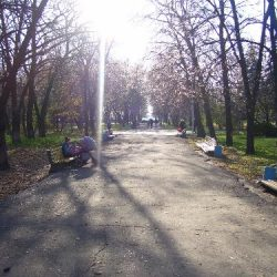 Аллея Приднепровского парка
