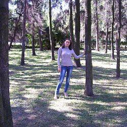 Ели в Приднепровском парке