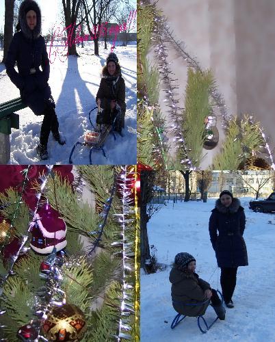 В Комсомольском парке на санках