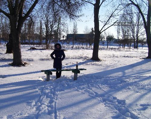Зима в Комсомольском парке