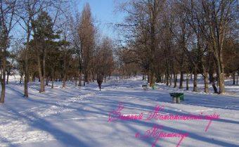 Комсомольский парк. Зимние развлечения.