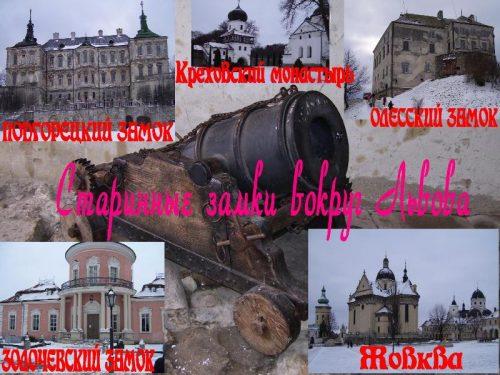Замки Львовской области