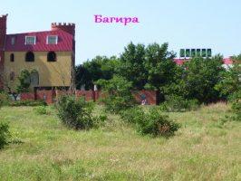 Багира в Кирилловке