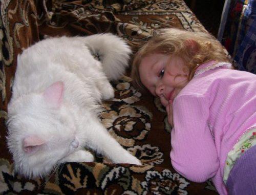 Настя с котиком