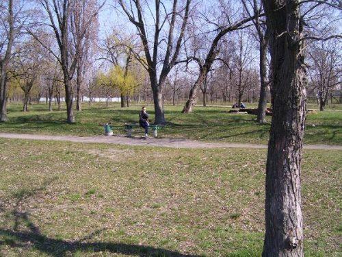 Комсомольский парк - место отдыха