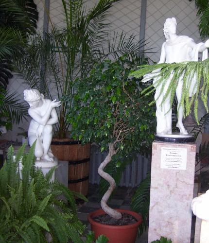 Скульптуры Зимнего сада дворца