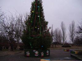 Новогодняя елка на Первом Занасыпи