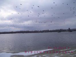 Вороны над Днепром