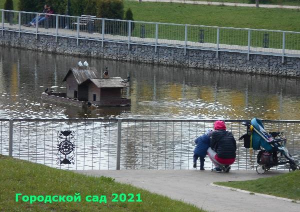 Городской сад 2021