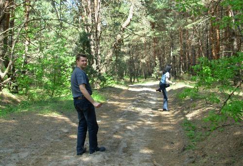 Далекий 2007. В сосновом лесу