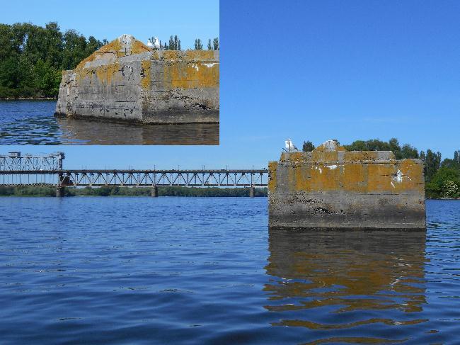 Быки старого моста