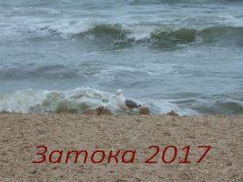 Затока2017. Отдых в июне