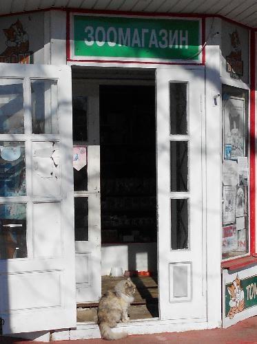 Зоомагазин в Кременчуге