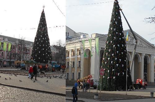 Полтавская елка