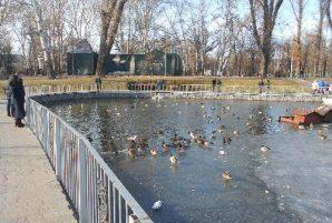 Весна в Городском саду. Оживление на озере