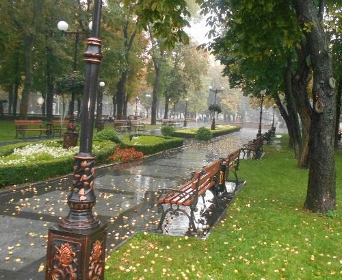 Осенний дождь