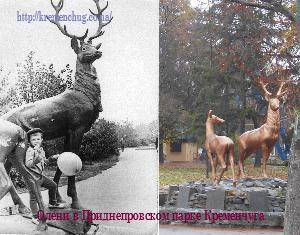 Олени Приднепровского парка