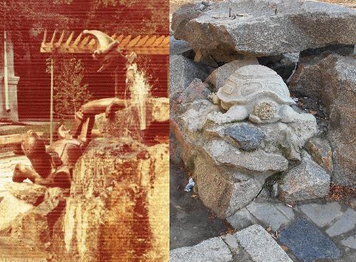 Буратино и черепаха Тортилла
