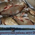 Кременчугская рыбалка