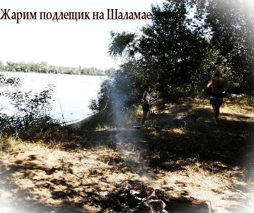 на днепровском острове