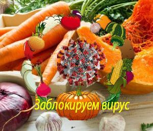 Противовирусные продукты — защита и адаптация организма