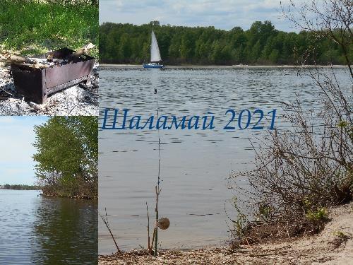 Шаламай 2021